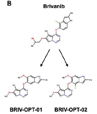 example of MolEQ(derived molecule from Bravanib)